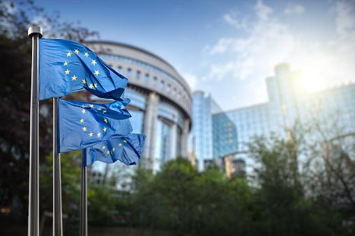 European union flag against parliament in Brussels 483074908