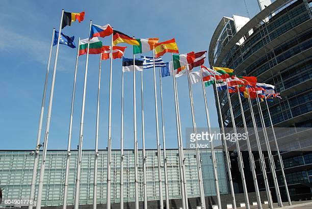 european union flags outside the european parliament in strasbourg - drapeau belge photos et images de collection