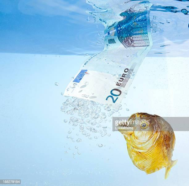 zone euro crise - piranha photos et images de collection