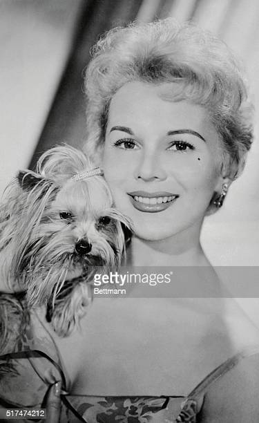 Eva Gabor sister of the betterknown Zsa Zsa but an actress in her own right fondle's her tiny Yorkshire terrier Sunny Boy during an interview in...