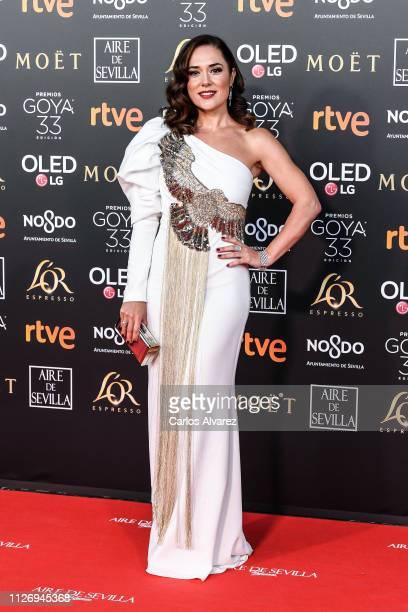 Eva Marciel attends the Goya Cinema Awards 2019 during the 33rd edition of the Goya Cinema Awards at Palacio de Congresos y Exposiciones FIBES on...