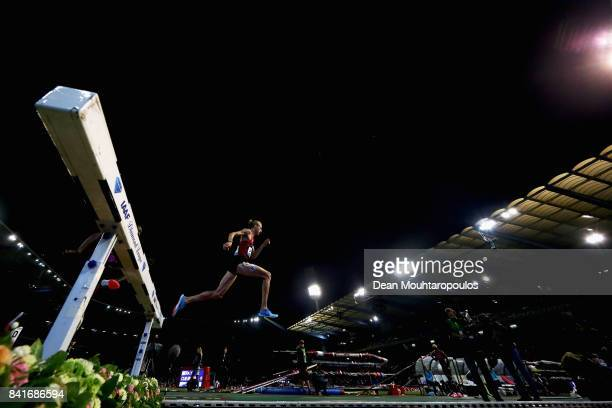 Evan Jager of the USA competes in the 3000m Steeplechase Men Final during the AG Memorial Van Damme Brussels as part of the IAAF Diamond League 2017...