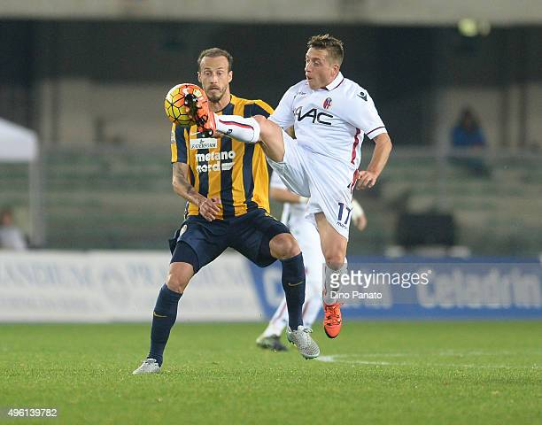 Evangelos Moras of Hellas Verona competes with Emanuele Giaccherini of Bologna FC during the Serie A match between Hellas Verona FC and Bologna FC at...