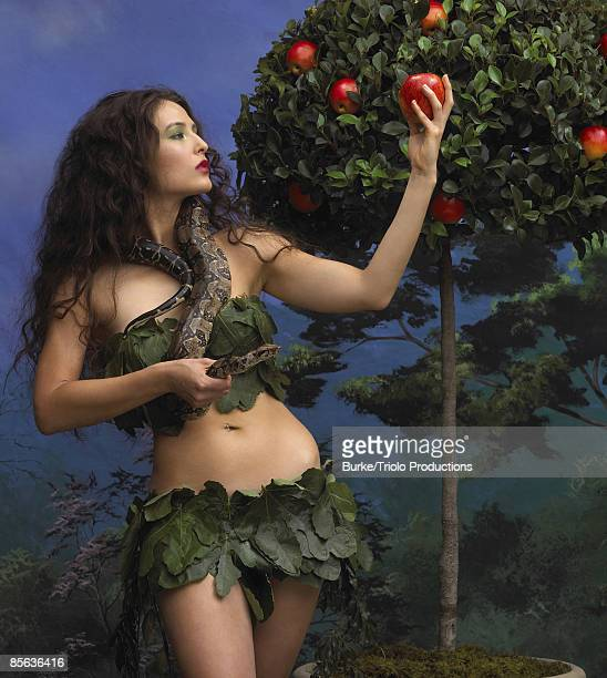 eve holding forbidden fruit and snake - garden of eden old testament stock photos and pictures