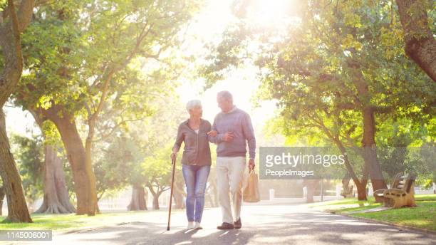 even as decades pass by, he's still by her side - walking cane stock pictures, royalty-free photos & images