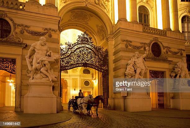 evening at the hofburg palace entrance - 四輪馬車 ストックフォトと画像