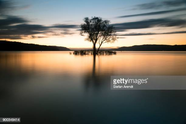 Evening atmosphere with sunset with clouds at Lake Constance, at the Klausenhorn, Dingelsdorf, Baden-Wuerttemberg, Germany