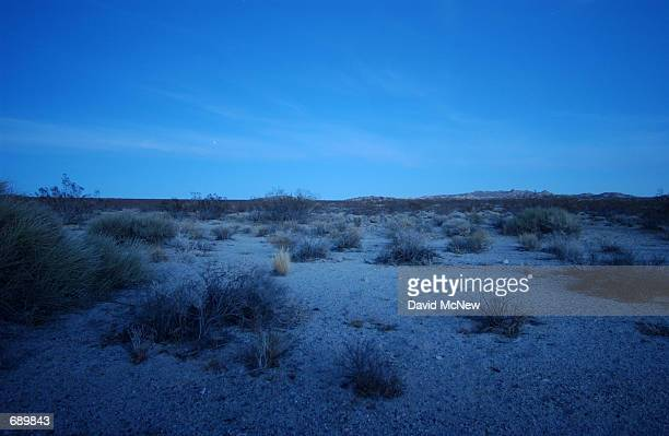 Evening brings a cold hue to the plain where endangered desert tortoises are hibernating in the proposed base expansion area southwest of the US...