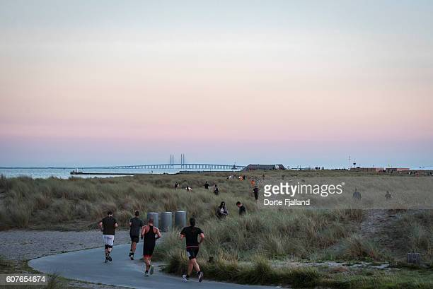 Evening by the beach, Amager Strand