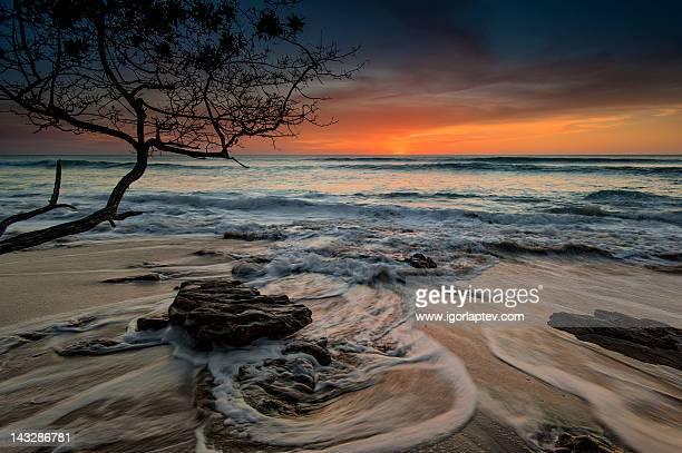 Evening in Tamarindo, Costa Rica