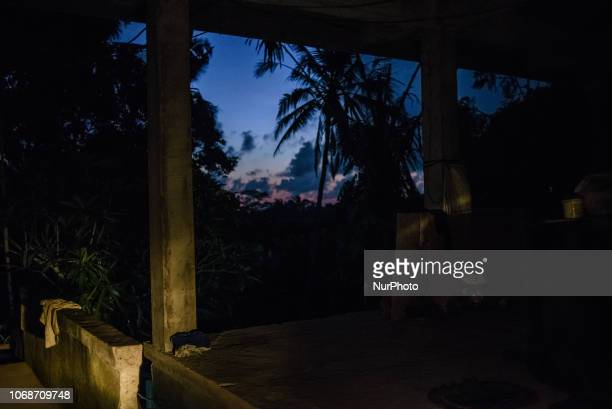 Evening landscape at the village near Ubud Ubud District Bali Indonesia in November 2018