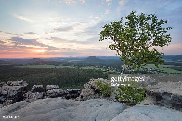 Evening mood on Mt Gohrisch with sunset, Elbe Sandstone Mountains, Saxony, Germany, Europe