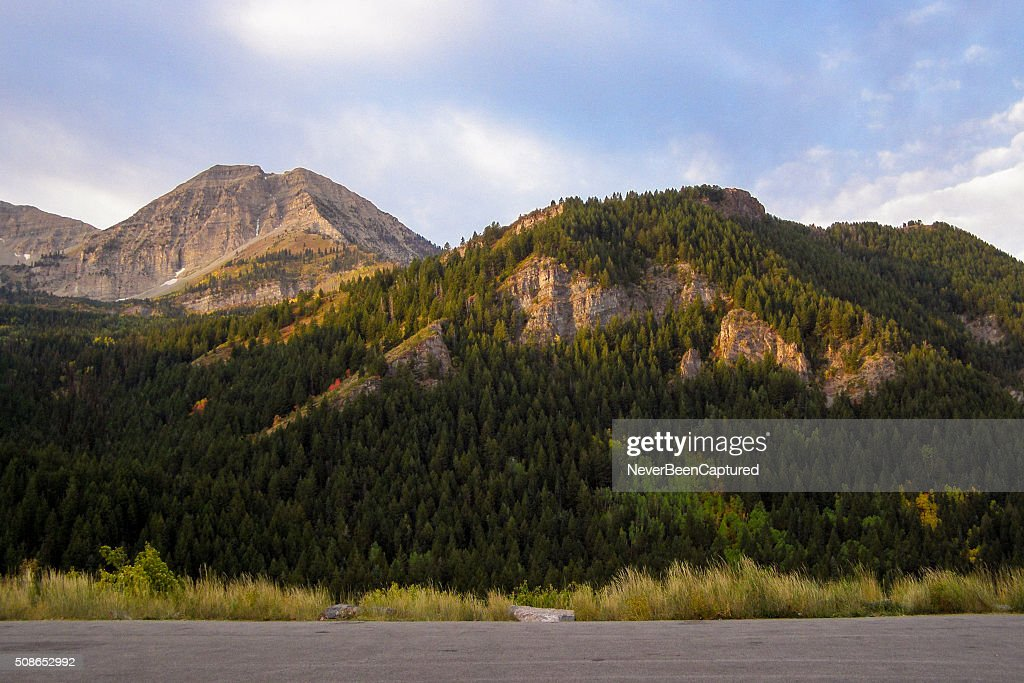 Evening Mountain Scene : Stock Photo