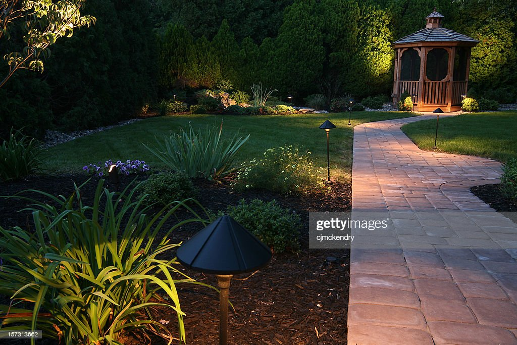 evening oasis : Stockfoto
