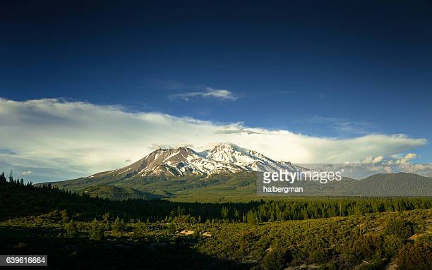 evening sun on shasta-trinity national forest - mt shasta stock pictures, royalty-free photos & images