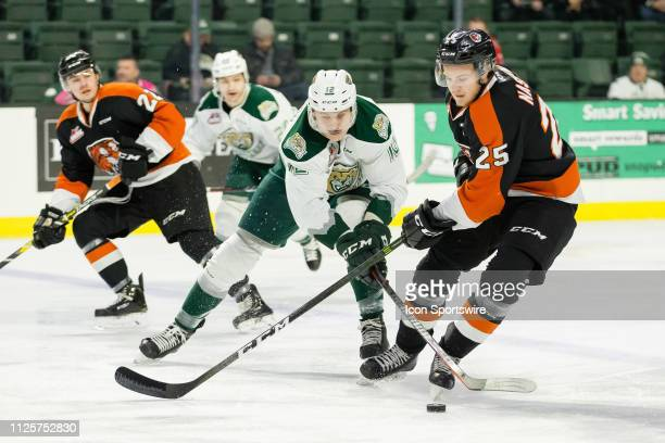 Everett Silvertips forward Max Patterson tries to steal the puck from Medicine Hat Tigers defenseman Linus Nassen in the first period of a game...