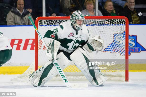 Everett Silvertips goaltender Carter Hart focuses on the play during the first period in Game 5 of the second round of the Western Hockey League...