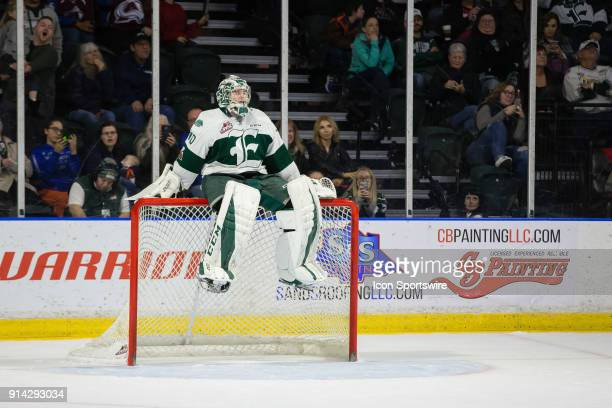 Everett Silvertips goaltender Carter Hart takes a break on the net during a lengthy goal review late in the third period during a game between the...