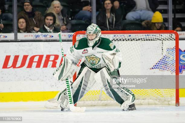 Everett Silvertips goaltender Dustin Wolf gets set before a faceoff in the third period during a game between the Everett Silvertips and the Portland...