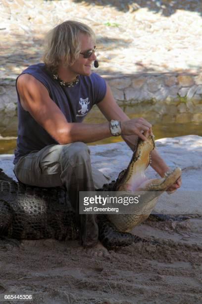 Everglades Holiday Park live gator show