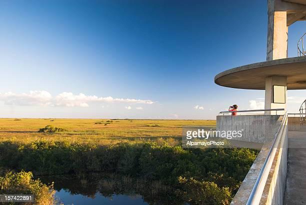 Everglades: Observation Tower - II