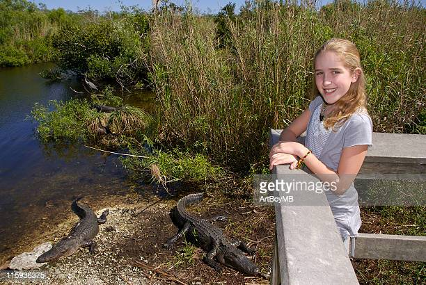 everglades - anhinga_trail stock pictures, royalty-free photos & images