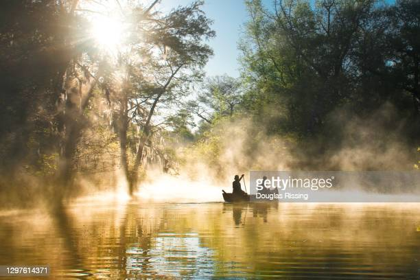 everglades ya national park - canoeing in mist - gulf coast states stock pictures, royalty-free photos & images