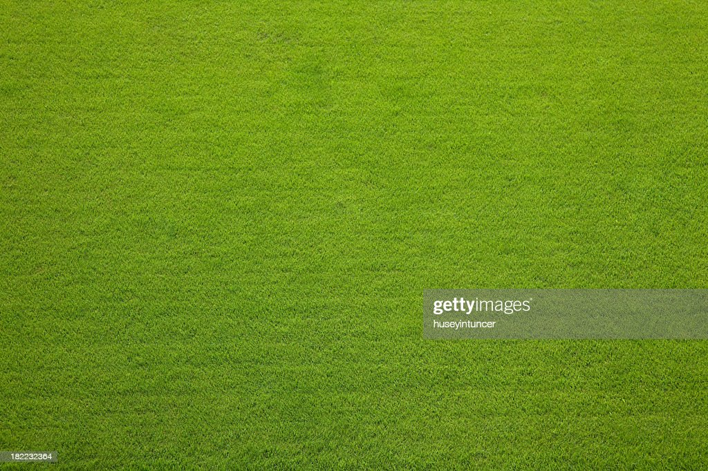 grass field from above. Plain Above Striped Soccer Field Evergreen Grass Texture Background And Grass Field From Above E