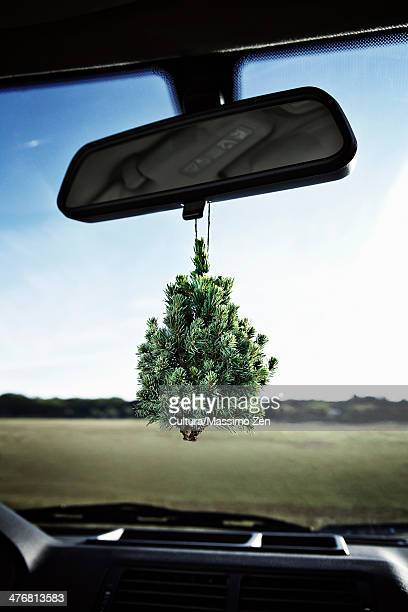 Evergreen tree on rearview mirror