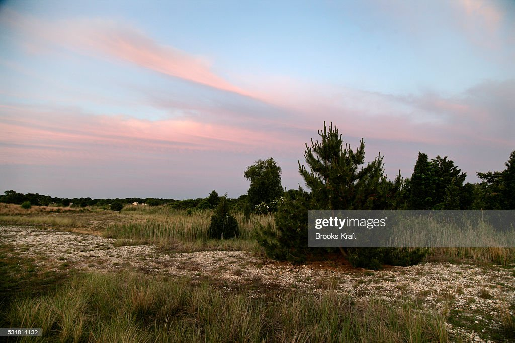 usa environment sand dunes pictures getty images