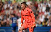 swansea wales everton goalkeeper jordan pickford