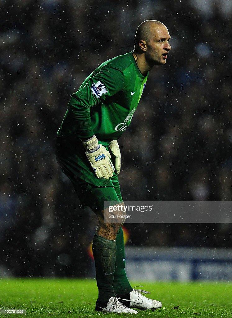 Everton FC 2012/2013