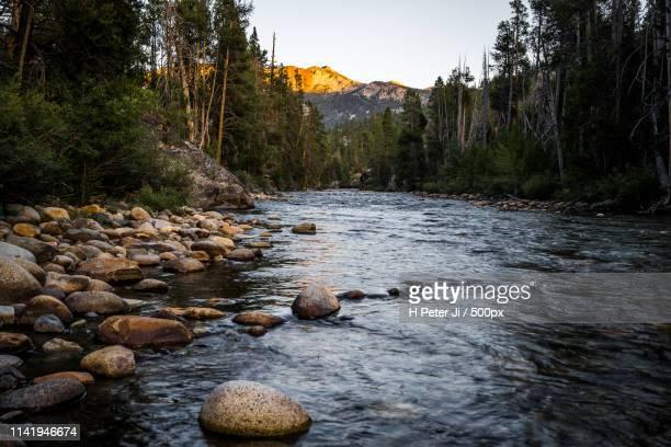 every bit of serene tranquility - ポーキュパイン山脈ウィルダネス州立公園 ストックフォトと画像