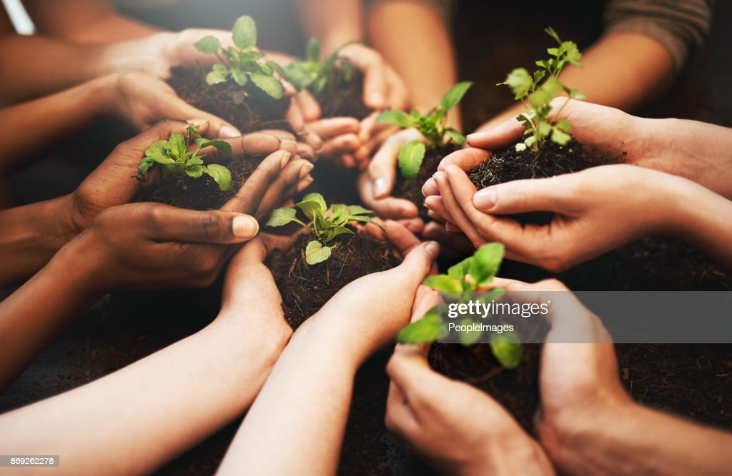 Everyday should be Earth Day : Stock Photo