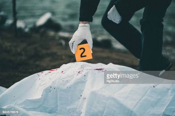 evidence on a crime scene - dead body in water stock pictures, royalty-free photos & images