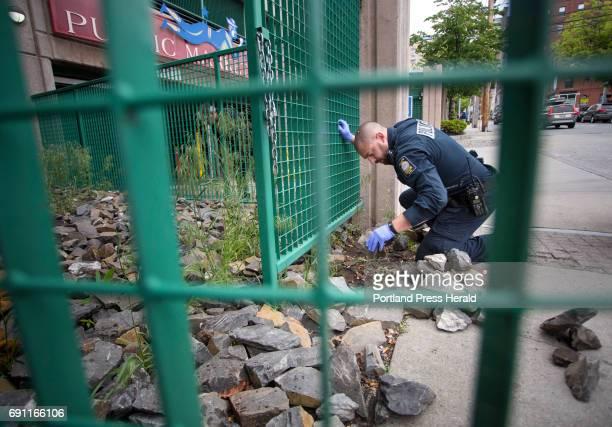 Evidence technician Frank Pellerin searches for bullet casings near a parking garage where a 39yearold man was shot on Preble Street in Portland on...
