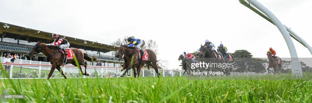 Evil Cry ridden by Harry Grace wins the Ladbrokes Rising Stars Race BM58 Handicap at Mornington Racecourse on April 16, 2018 in Mornington, Australia.