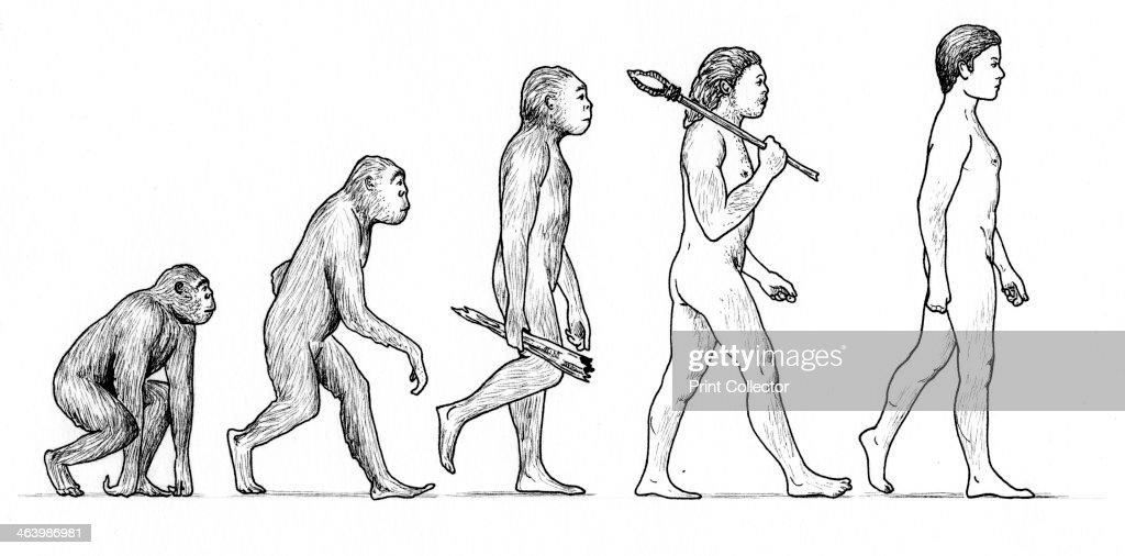 Evolution of ManArtist: Karen Humpage : News Photo