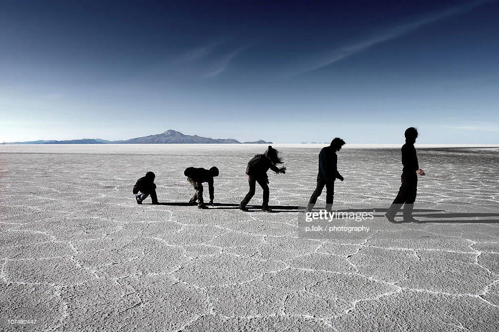Evolution : Stock Photo