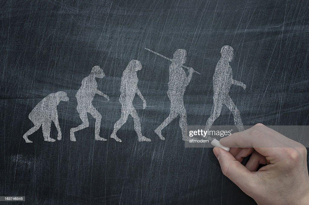 Evolution : Foto de stock