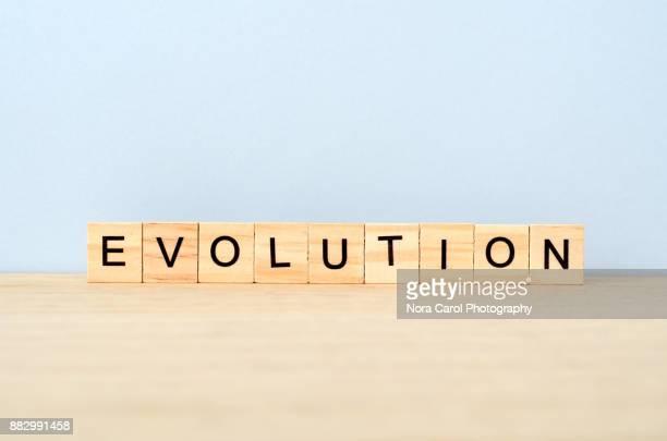 Evolution Word on Wooden Tile Block