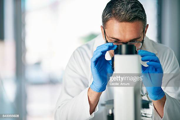 Examining a tissue section for evidence of cancerous cells