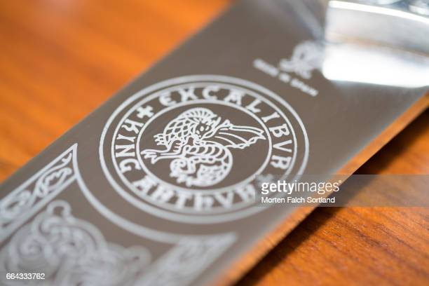 excalibur seal - excalibur stock photos and pictures