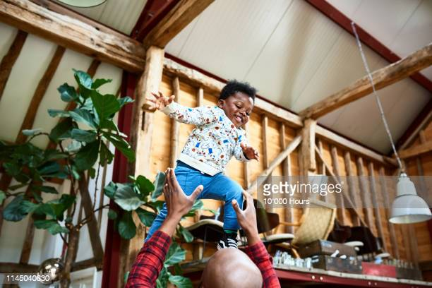 excited child being thrown mid air by his father at home - trust stock pictures, royalty-free photos & images