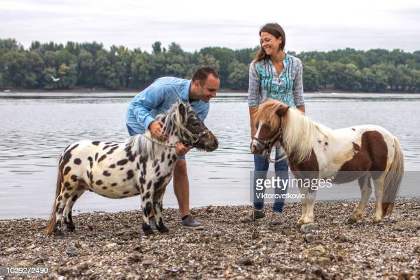 excited couple with pony by river - pony stock pictures, royalty-free photos & images