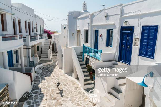 Excited dog and its shadow playing in a courtyard surrounded by doors and stairs of traditional white Greek houses with blue paintwork, in bright sunlight, Kastro Village, Sifnos, Cyclades Islands, Greece