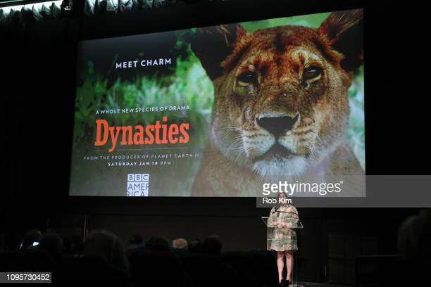 Executive Director of BBC AMERICA Courtney Thomasma attends the premiere of BBC America's 'Dynasties' at IFC Center on January 17 2019 in New York...