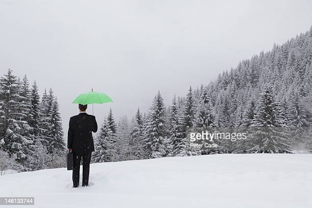 executive holding green umbrella stood in snow - peter snow stock pictures, royalty-free photos & images
