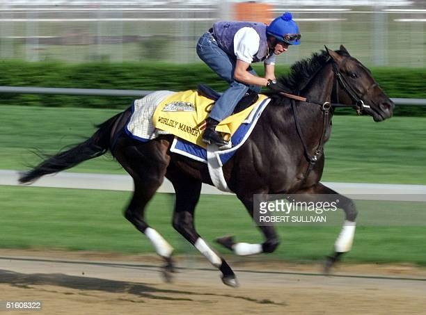 Exercise rider Daragh O'Donohoe take Kentucky Derby hopeful Worldly Manner a horse owned by Sheikh Mohammed al Maktoum of Dubai through morning...