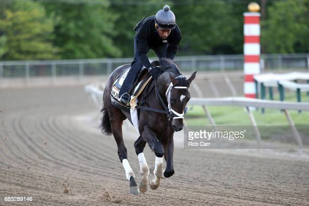 Exercise rider Nick Bush rides Kentucky Derby winner Always Dreaming as he trains on the track for the upcoming Preakness Stakes at Pimlico Race...